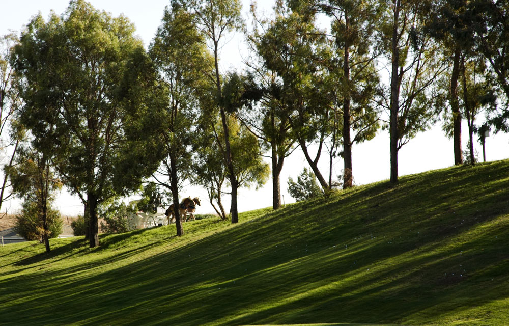 Summitpointe Golf Course, Milpitas Bay Area CA